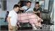 Giá lợn tăng, thận trọng khi tái đàn