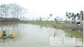 Thắng Cương mở rộng diện tích thủy sản