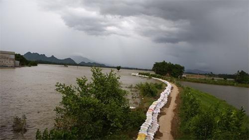 Nước sông Bùi đã rút nhưng vẫn ở mức cao, không có tuyến đê nào bị vỡ