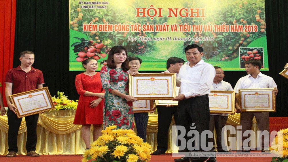 Phó Chủ tịch UBND tỉnh Dương Văn Thái trao Bằng khen cho các tập thể, cá nhân.