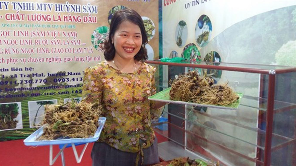 Virtual portal on Ngoc Linh ginseng tourism area launched