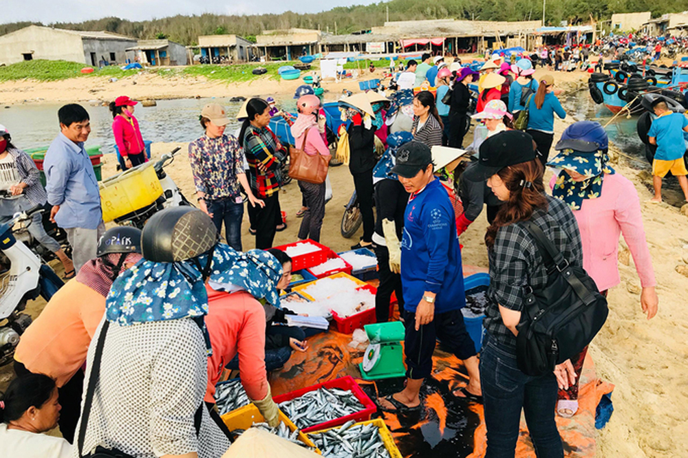 Go fishing, central Vietnam, Vietnam island, tourism map, Phu Quy island,  famous resort town,  seafood selling points
