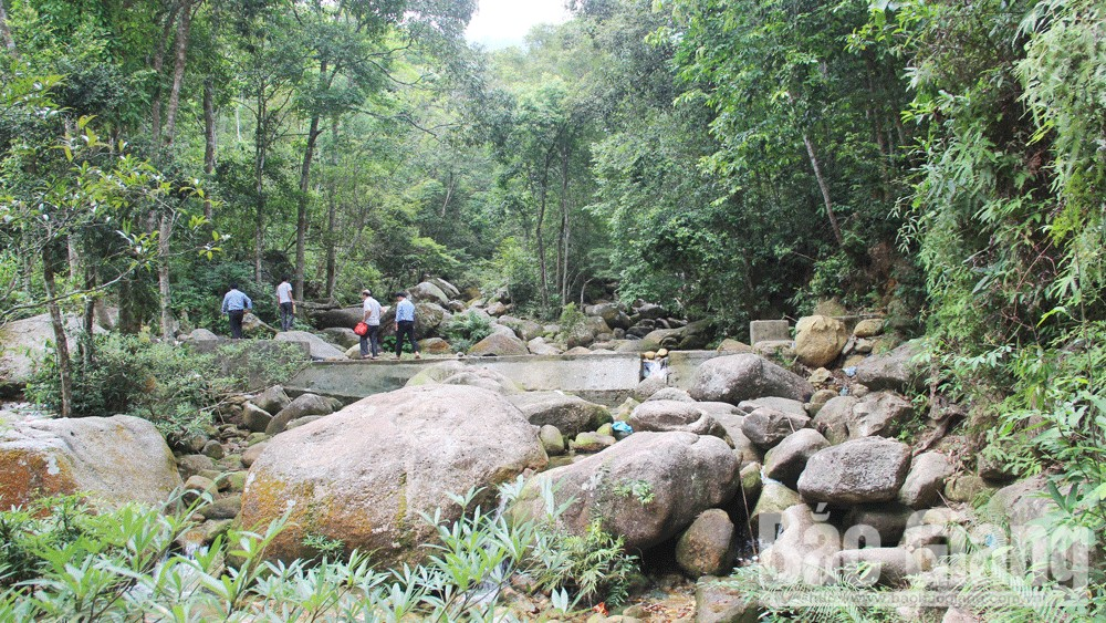 Treasure, Tay Yen Tu, Bac Giang province, mountain range,  religious relics, diverse primeval forest, heaven and earth, medicinal plants