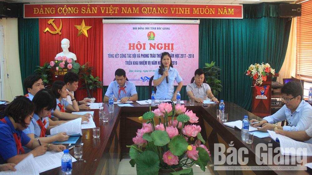 thiếu nhi, Bắc Giang, Hội đồng Đội