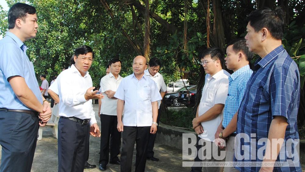 Đề nghị xét, công nhận huyện Việt Yên đạt chuẩn nông thôn mới