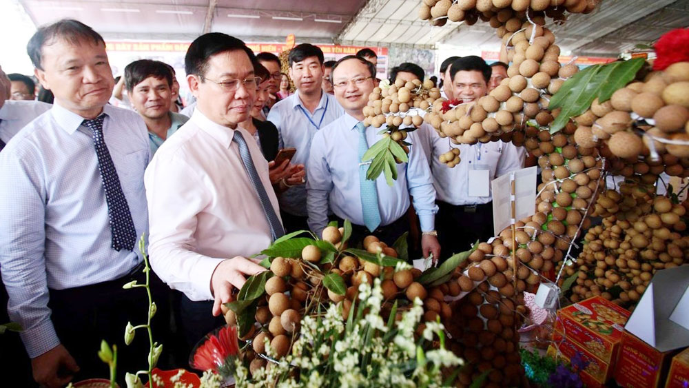 Hung Yen needs to reasonably zone for longan: Deputy PM