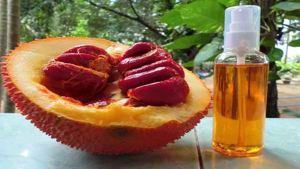 Tác dụng bất ngờ của tinh dầu gấc với sức khỏe và sắc đẹp