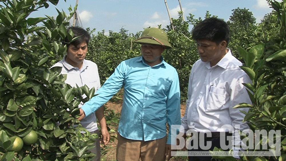 Hỗ trợ thôn Đồng Quýt, xã Tân Mộc 500 triệu đồng xây dựng nông thôn mới