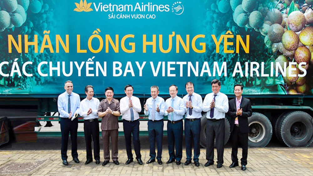 Hung Yen longan becomes dessert on Vietnam Airlines flights