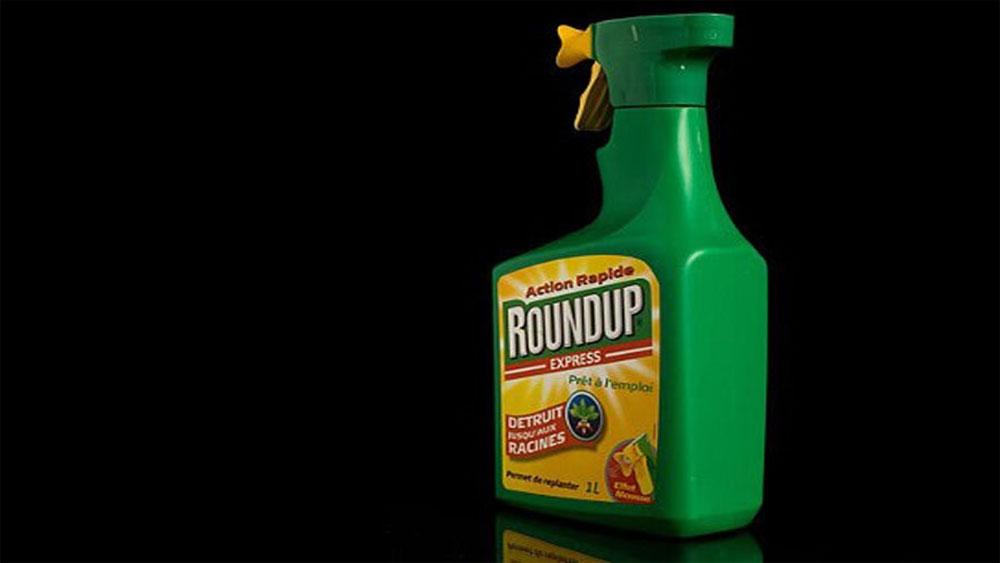 Thuốc diệt cỏ glyphosate gây ung thư đang sử dụng ở Việt Nam?