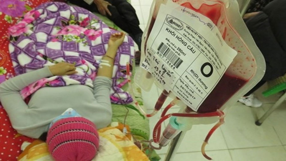 Thiếu máu nhóm O trầm trọng, khẩn thiết kêu gọi cộng đồng chung tay