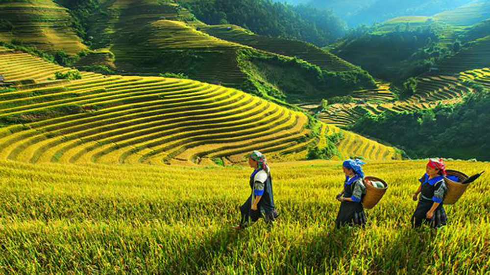 Vietnam among 10 most interesting destinations, top globetrotter says