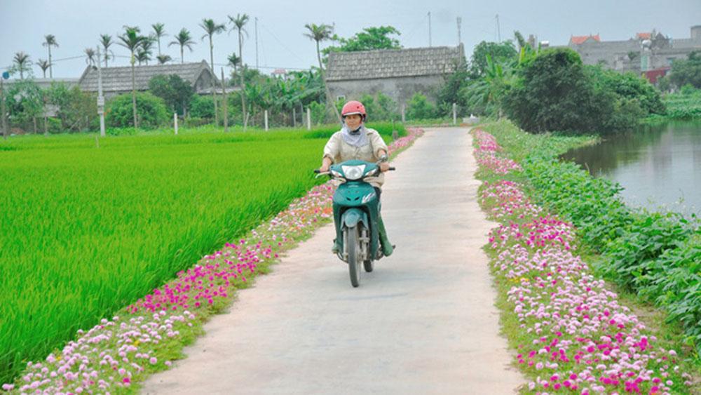 Phát động phong trào trồng hoa ven đường