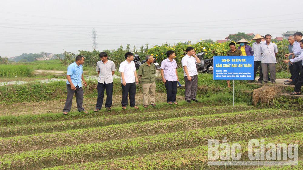 Các đại biểu tham quan mô hình sản xuất, kinh doanh nông nghiệp an toàn tại xã Hợp Thịnh (Hiệp Hòa).