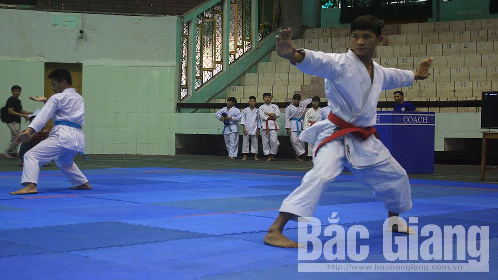 Giải Karatedo Bắc Giang mở rộng thu hút gần 300 VĐV tham gia