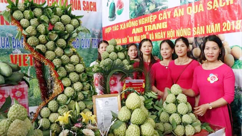 Mai Son sugar apple receives certification mark