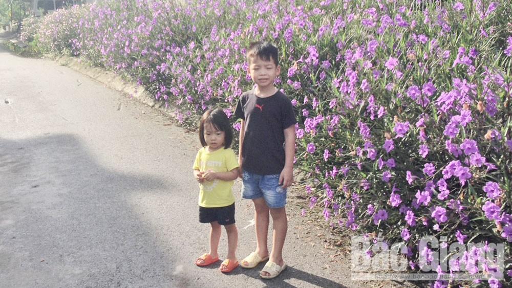 Nối dài những đường hoa