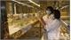 Lai tạo, thử nghiệm giống mới tạo đột phá trong sản xuất nông nghiệp