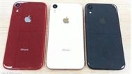 iPhone 9 giá rẻ nhất bộ iPhone 2018 có 3 màu cực hấp dẫn