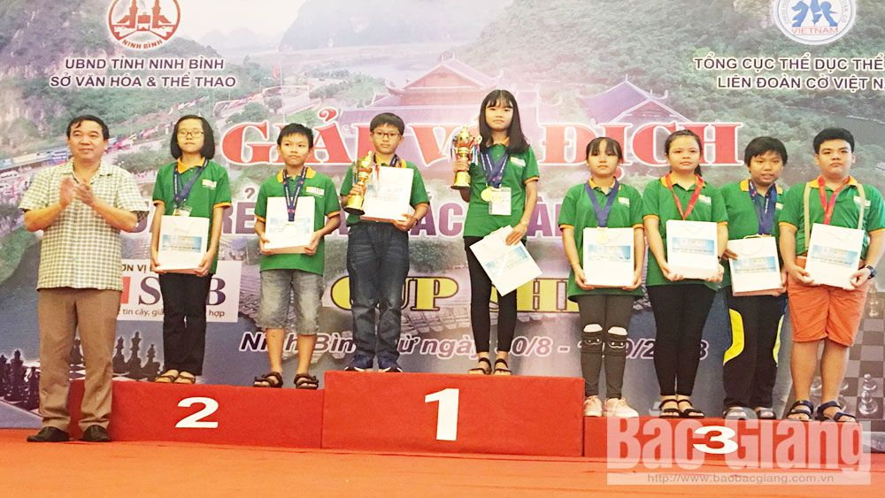 Bac Giang team wins 5 medals at national excellent youth chess championship