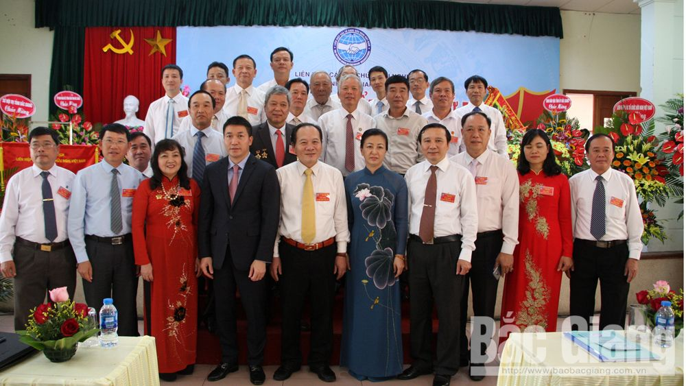 Bac Giang reinforces friendship organizations, expands international cooperation ties