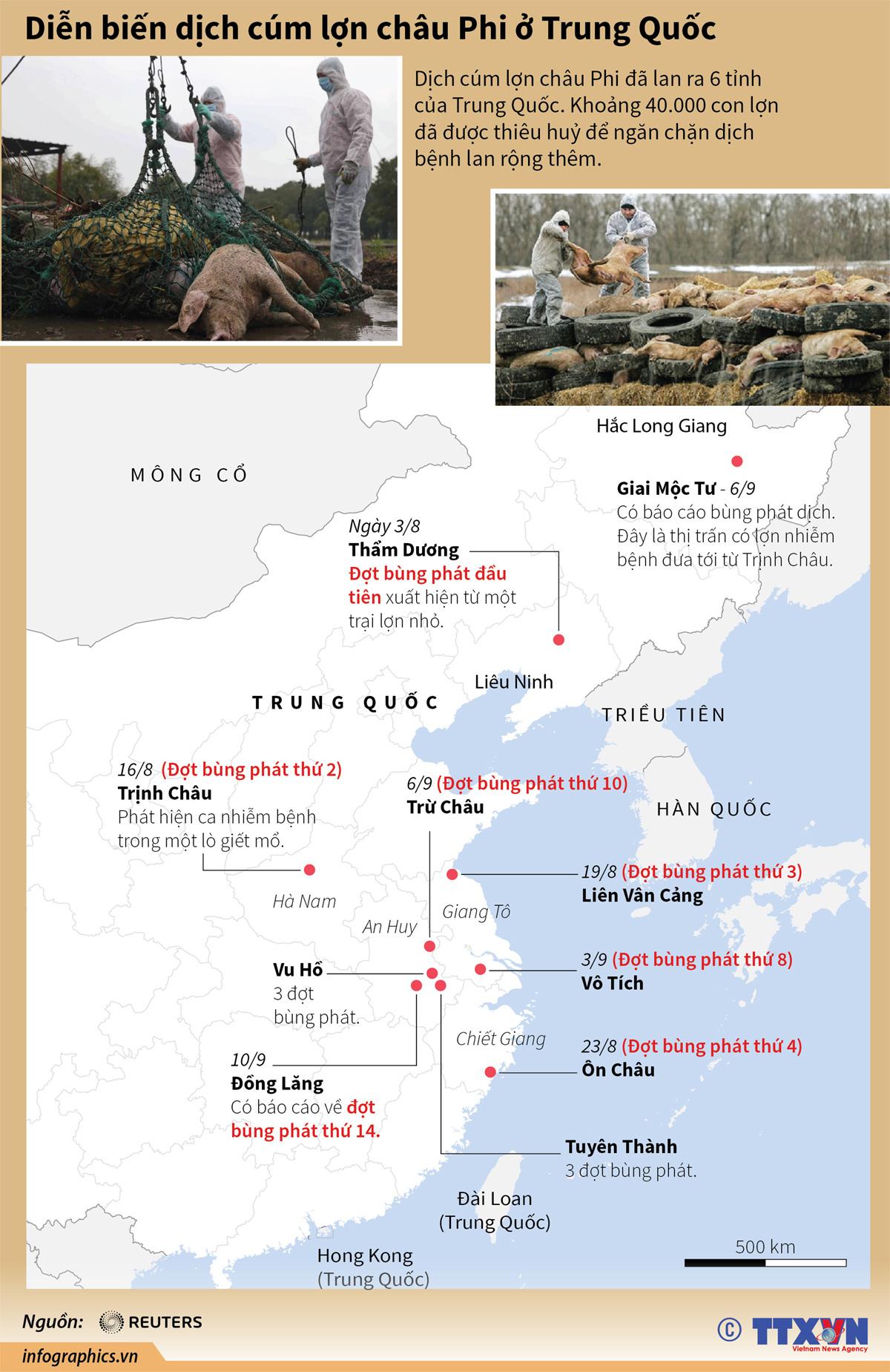 dịch cúm lợn châu Phi, Trung Quốc, tiêu hủy, ngăn chặn dịch bệnh, lây lan dịch bệnh