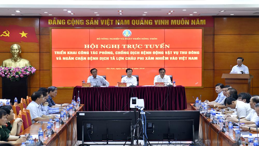 Hội nghị trực tuyến, phòng chống dịch bệnh, ngăn chặn Dịch tả lợn châu Phi, Bắc Giang, Báo Bắc Giang