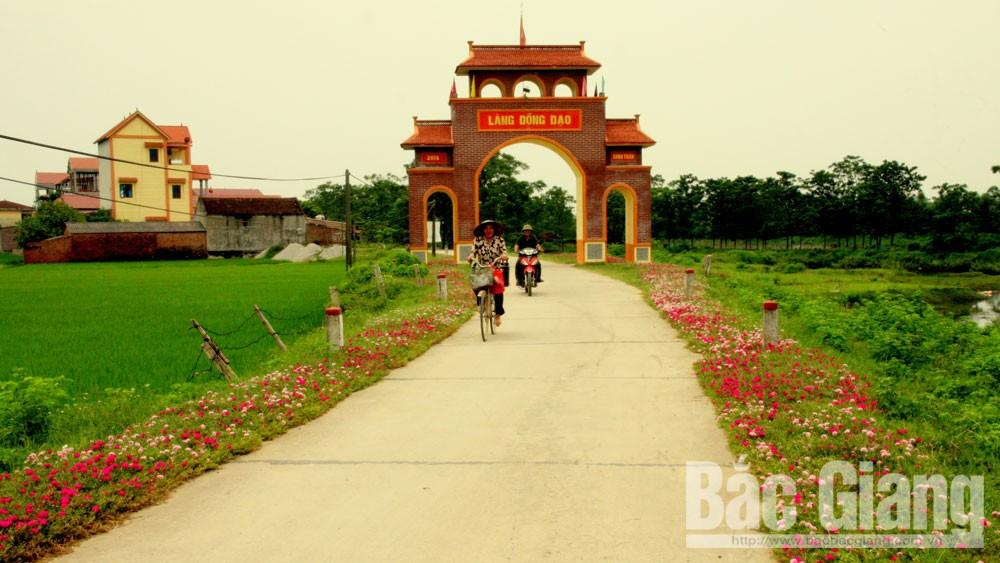Đường hoa thôn Đồng Đạo, xã Hợp Thịnh đoạt giải Đặc biệt