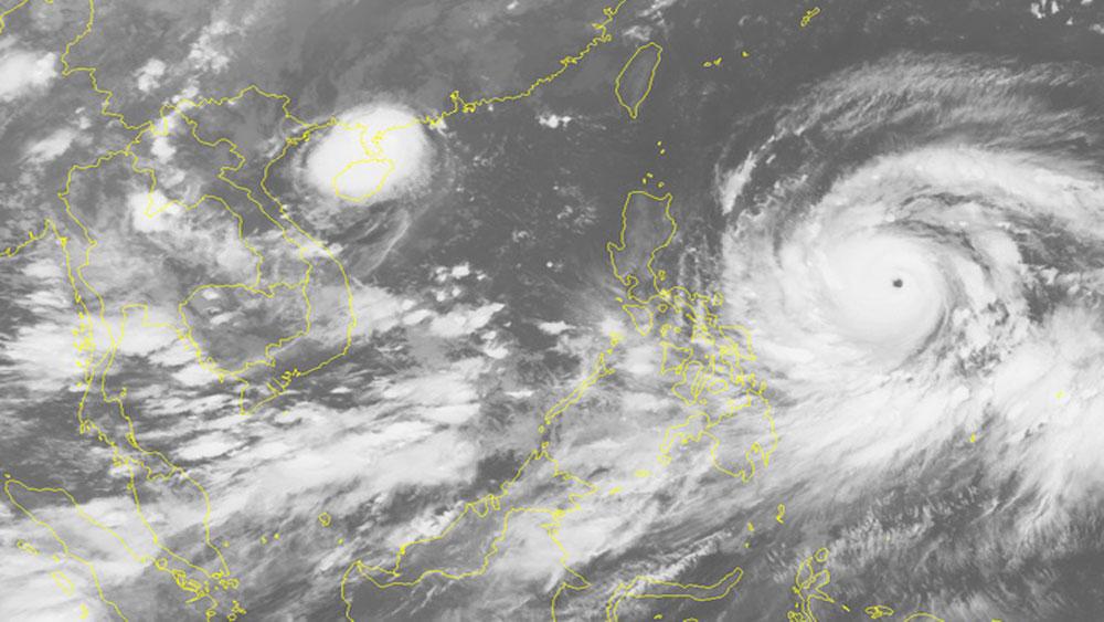 Từ đêm 14-9, vùng biển Đông Bắc Biển Đông, mưa bão, gió mạnh, cấp 11-12