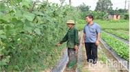 Nhất thể hóa chức danh bí thư chi bộ kiêm trưởng thôn ở Lục Nam: Phù hợp ở nơi dân số ít
