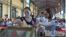 Hơn 800 hồ sơ đấu giá 55 lô đất ở tại xã Hương Gián