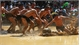 Vietnam's mud ball wrestling a unique world tradition
