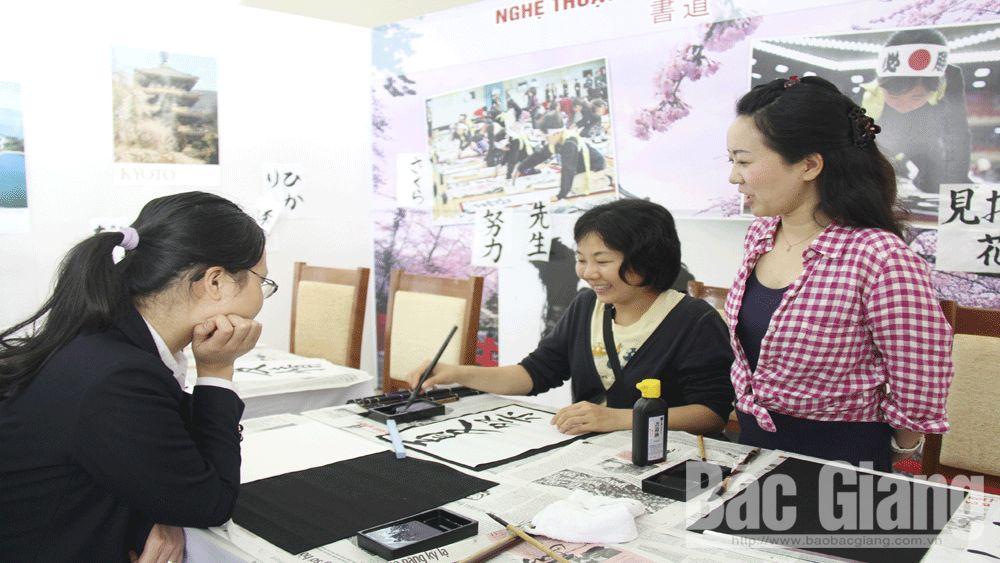 quan hệ Việt Nam- Nhật Bản, doanh nghiệp Nhật Bản, Tổ chức JICA, viện trợ, Hợp tác quốc tế Nhật Bản (JICA), dự án