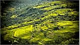 Danh sách nhà nghỉ và homestay trên địa bàn huyện Na Hang
