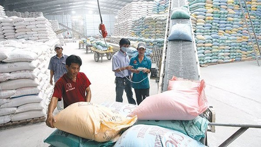 Vietnam to host World Rice Conference in October