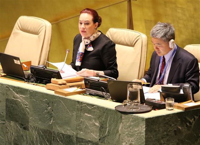 United nation, One minute in silence, President Tran Dai Quang, General Assembly, national leader
