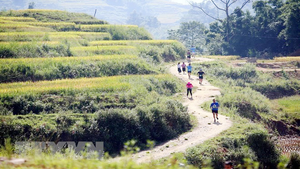 Over 3,100 runners compete in Sa Pa int'l mountain marathon