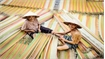 100-year-old mat making village in south Vietnam still going strong