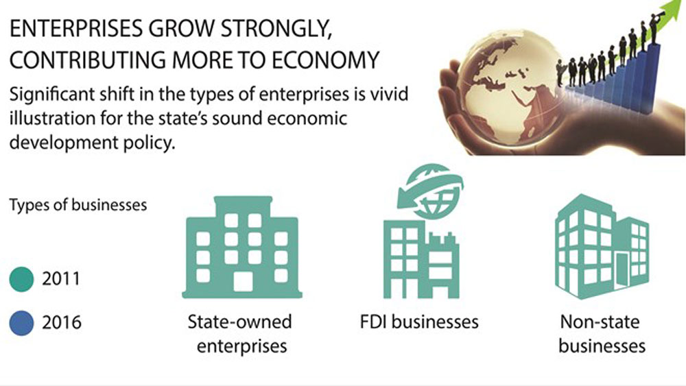 Enterprises grow strongly, contributing more to economy