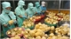Fruit and vegetable exports expected to hit US$4 billion