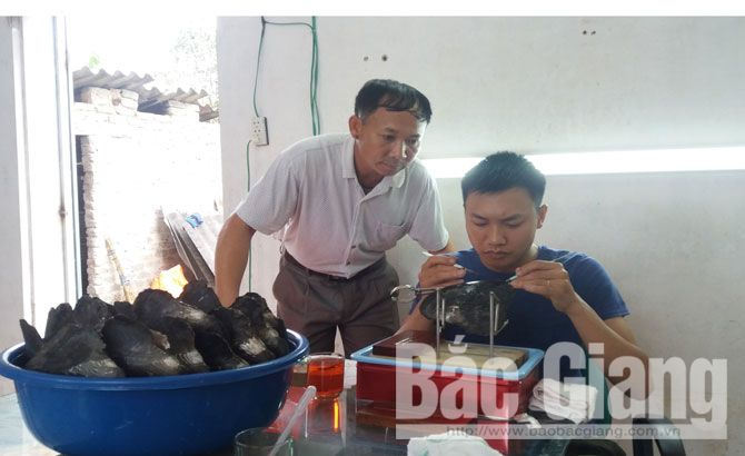 Freshwater pearl oyster, farming and culture, final round, first national contest, start-up contest, rural youth, Bac Giang province, Truong Dinh Tung