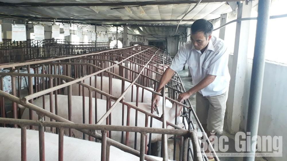 Phòng bệnh cho đàn vật nuôi: Người dân còn xem nhẹ