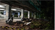 Động đất 6,1 độ làm rung chuyển đảo Sulawesi