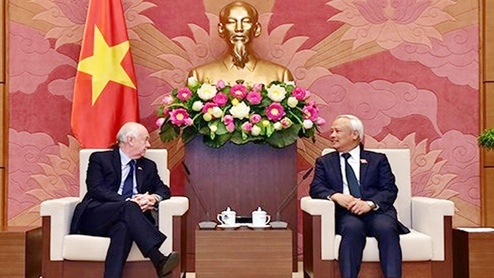 National Assembly, Vice Chairman, friendship with UK, friendship and cooperation, bilateral strategic partnership, mutual support, Vietnam-UK ties