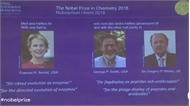 Nobel Hóa học 2018 thuộc về Mỹ và Anh với nghiên cứu enzyme, kháng thể