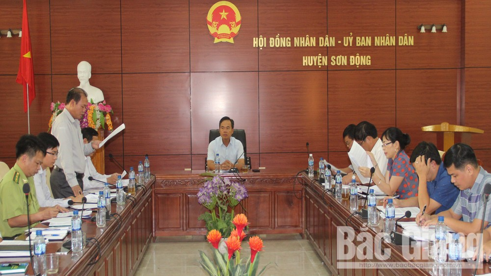 Execution of policy, forest grower, manager and protector, Bac  Giang province, working delegation, forest management and protection, Son Dong district, economic forest, natural woods,  locals' expectation