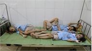 Ninh Bình: 50% số học sinh nghi ngộ độc thực phẩm đã xuất viện