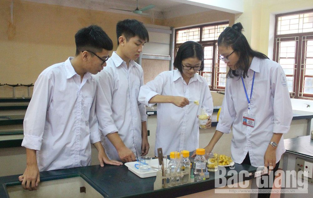 Passion for science, Bac Giang province, scientific and technical innovations, Useful products, preservation time,  silkworm cocoons