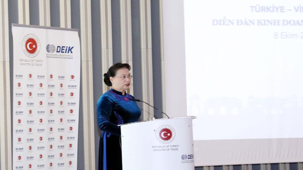 Chủ tịch, Quốc hội Nguyễn Thị Kim Ngân, Diễn đàn Kinh doanh và Đầu tư Thổ Nhĩ Kỳ - Việt Nam