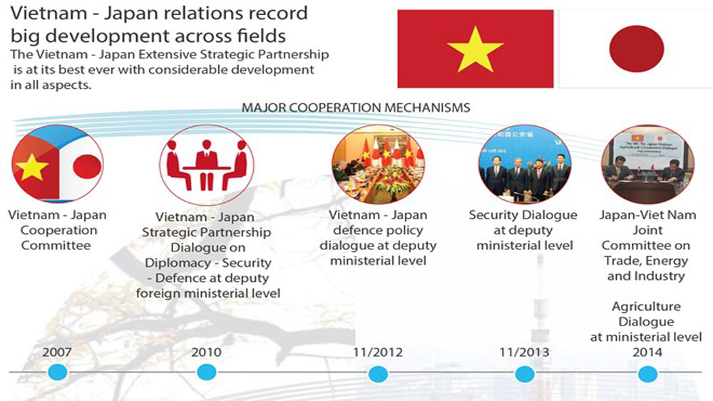 Vietnam - Japan relations record big development across fields